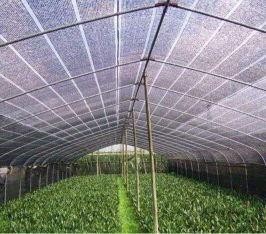 agricultural shading net