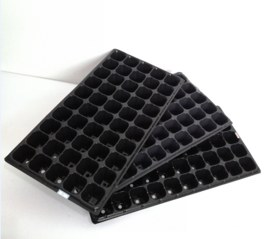 seedlings trays wholesale plastic seeding tray in quality assurance.